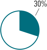 Investment Proportion Pie Chart
